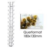 Glückwunschkartenleiste mit 12 Fächern QF 180 mm